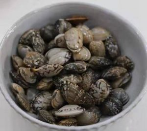 clean the clam